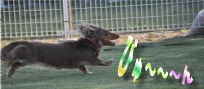 Fetch_3