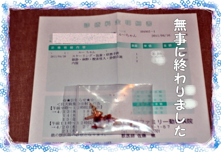 Dsc_0125_2